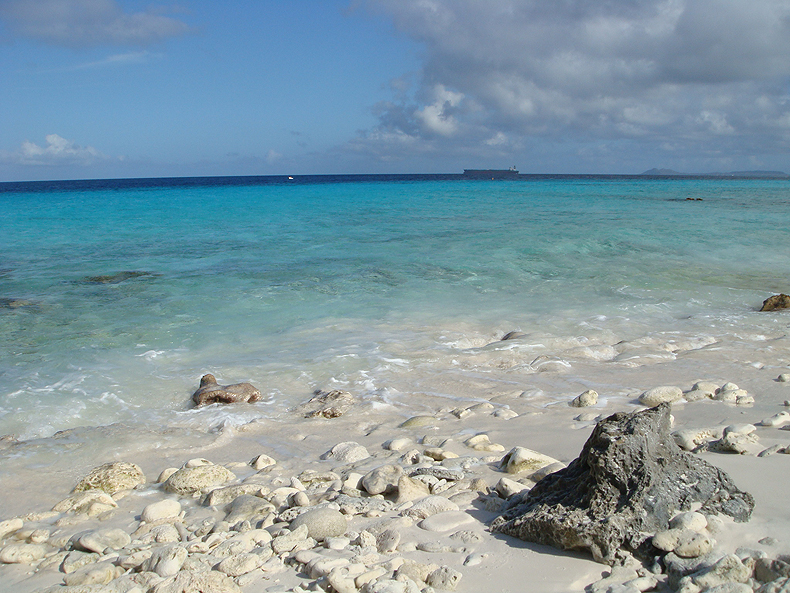tropical_beach_bonaire.jpg